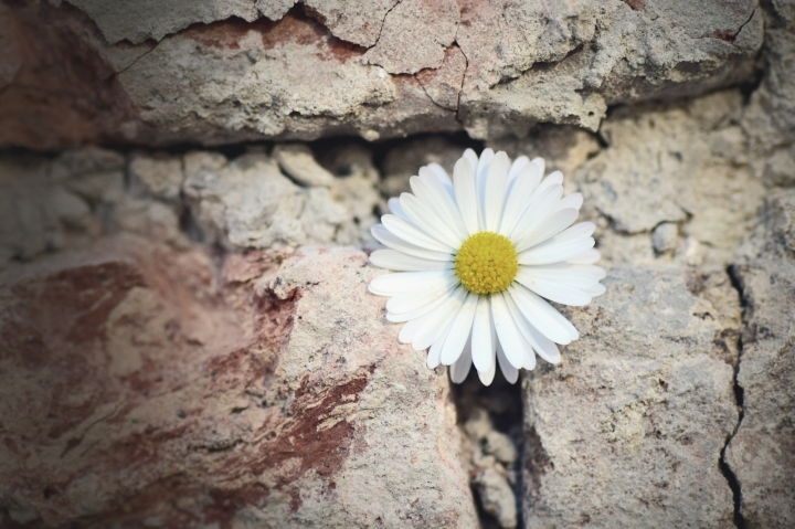 Believing Without Belonging